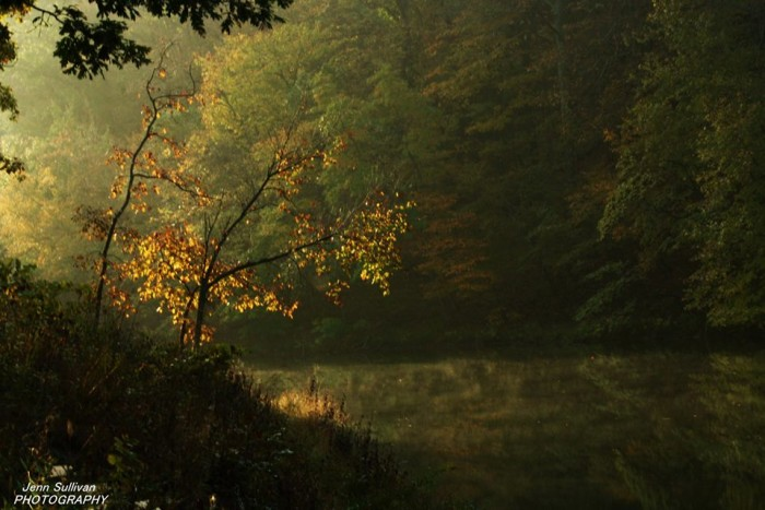 10.  Jenn Sullivan shared this great photo of Cuivre River State Park taken October 10.