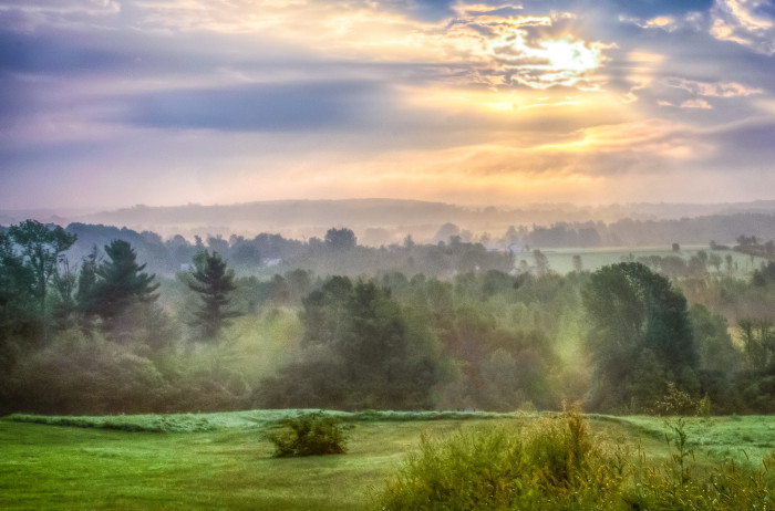 Early Morning on Mt. Philo Road