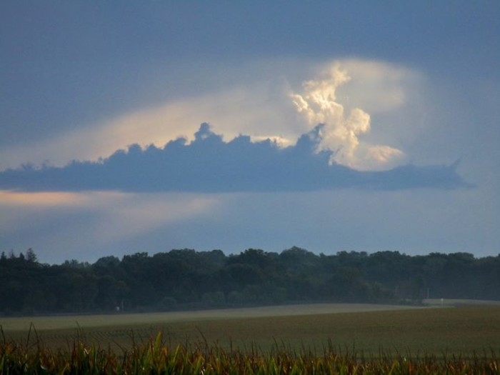 10. Sherri Willey photographed this amazing swan-looking cloud near Shell Rock.