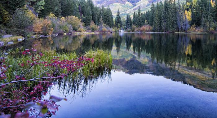 10. Lizard Lake (Carbondale)