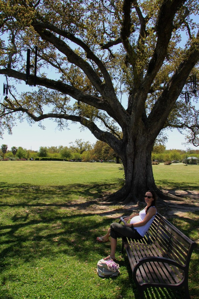 6) The Singing Oak, New Orleans