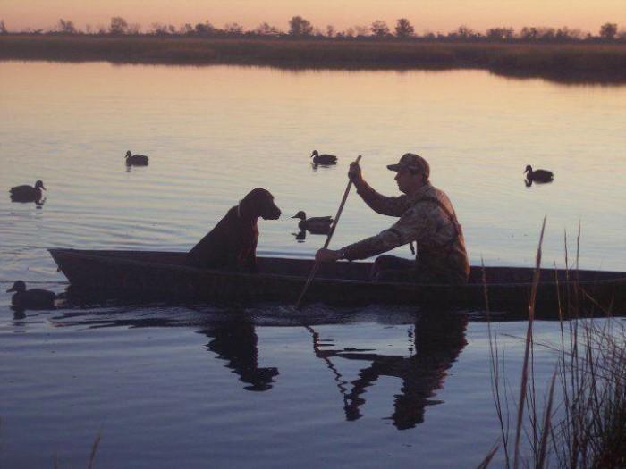 8) Louisiana Paradise....photo taken in Lafitte by Jane Powell Rodrigue.