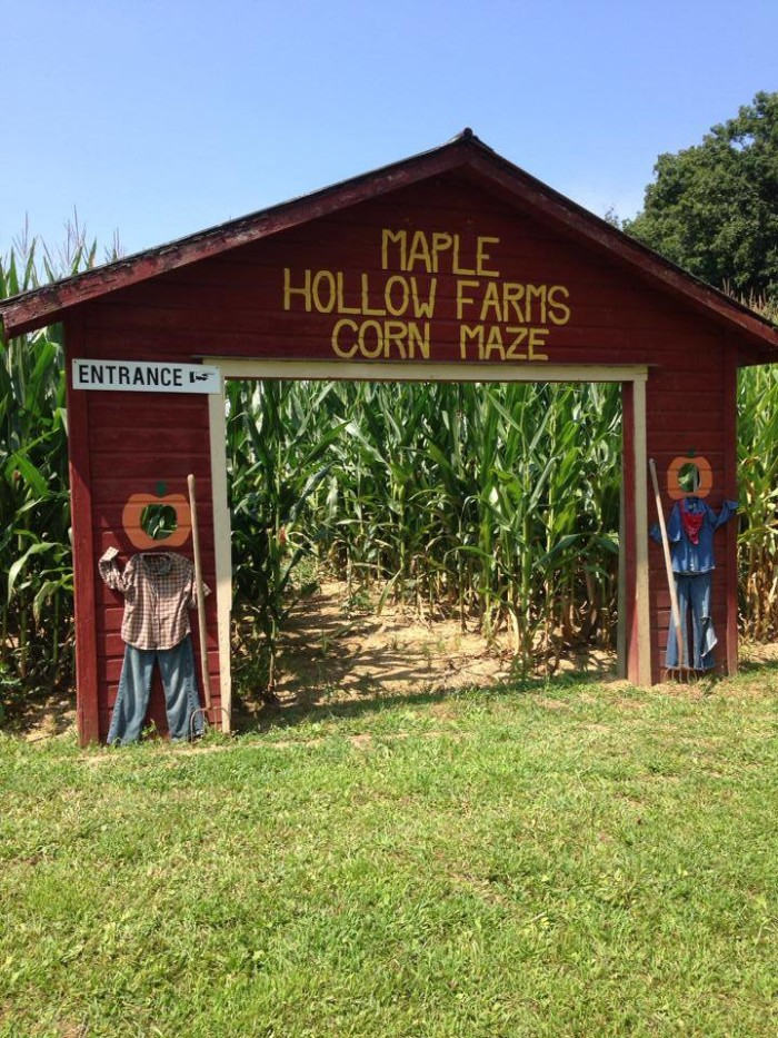 3. Maple Hollow Farms (West Lafayette)