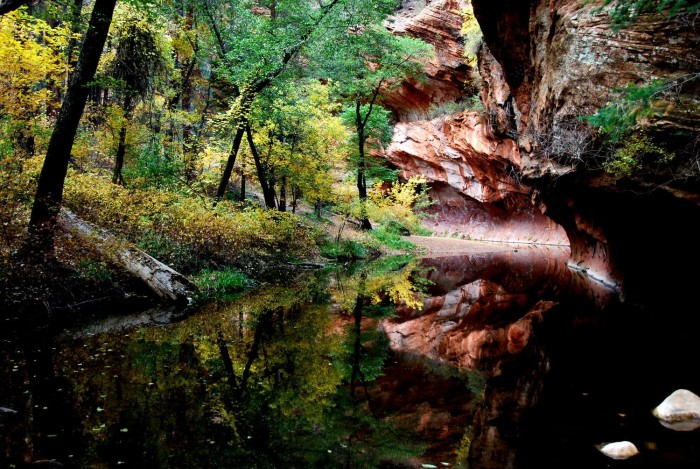 9. This photo makes me want to head over to Oak Creek Canyon right now!