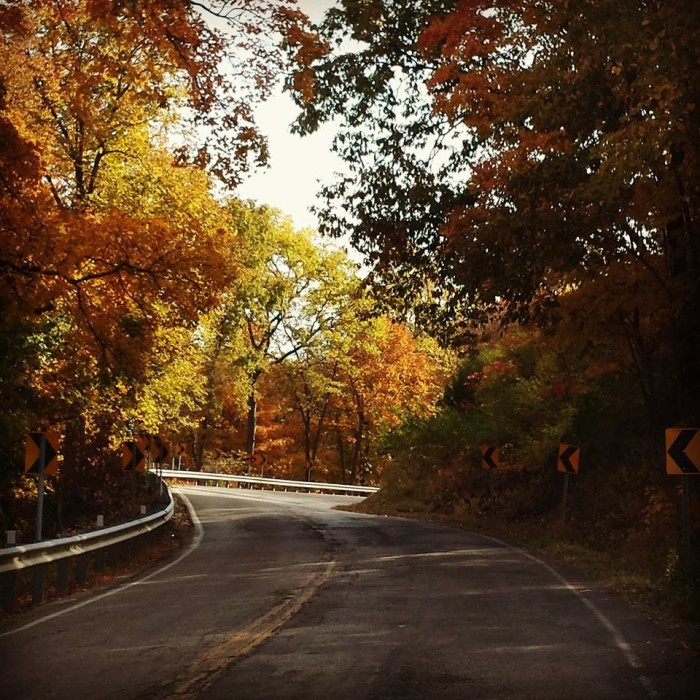 11. A great fall shot by Stephanie Roberts Cotton taken onHighway 79 just north of Louisiana.