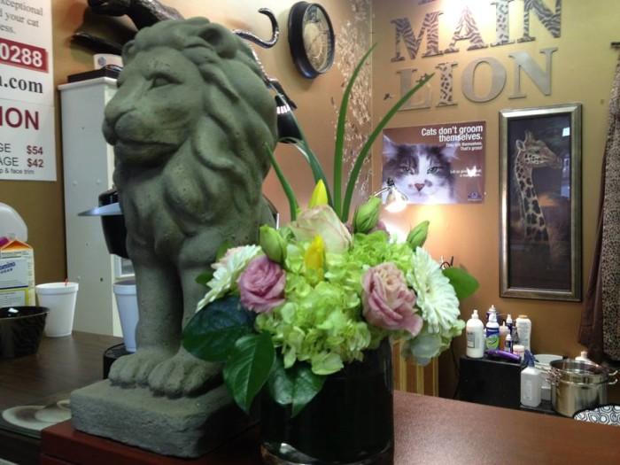 5. Main Lion Cat Grooming Salon, Paoli