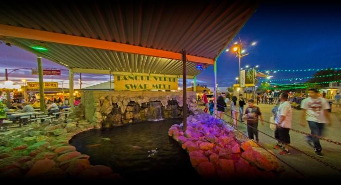 5. Tanque Verde Swap Meet, Tucson