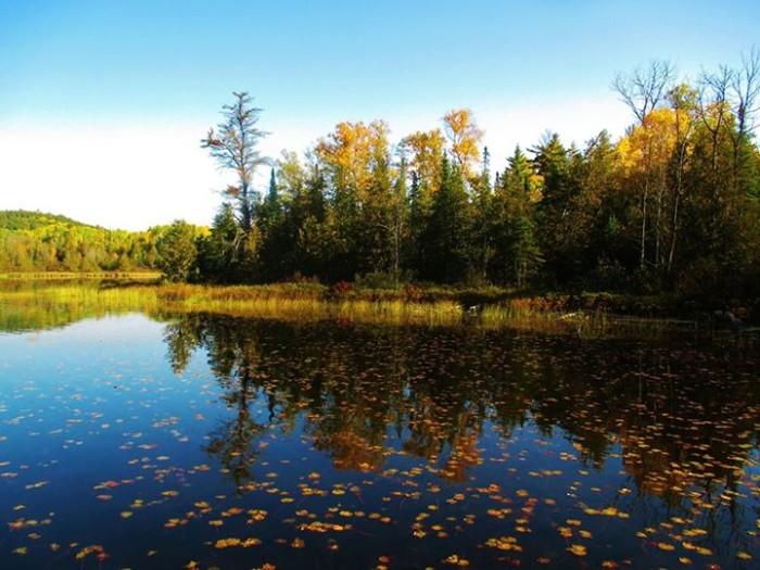 9. Becky Krause Steiger took a stunning shot of the BWCA fall foliage!
