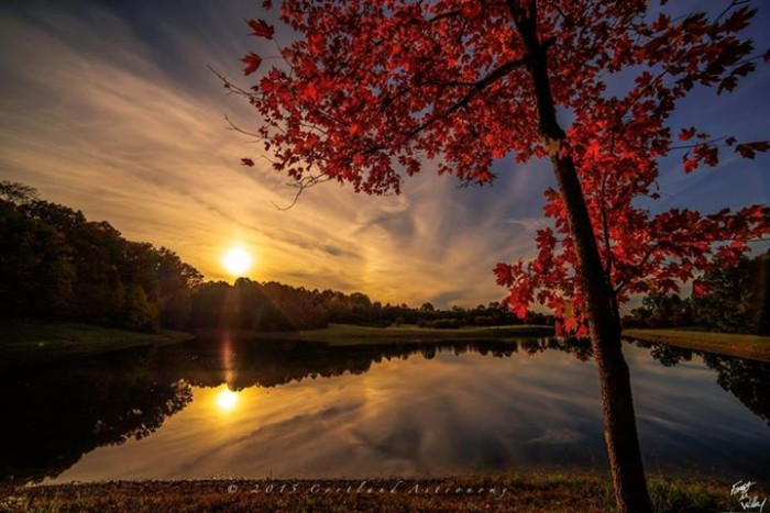 """2. Forrest has affectionately named this piece """"Sundogs and Sugar Maples"""". I love the reflection of the sky in the water."""