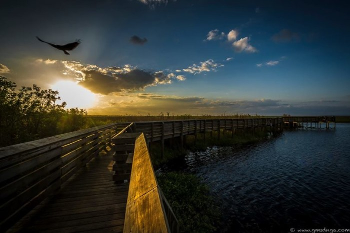 1. Thanks to Marty Fletcher for this shot of the St Johns River taken in Brevard County