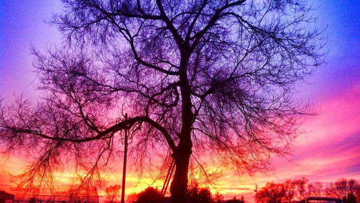 17. This magical candy-colored sky at sunset was photographed by Jeni Kellum.