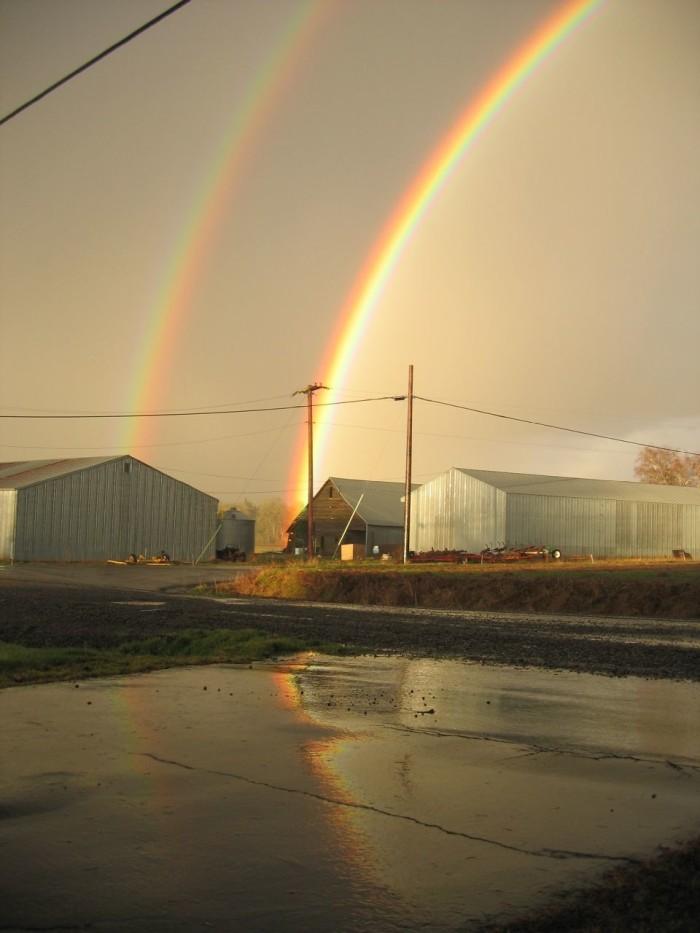 7) Double rainbow!!