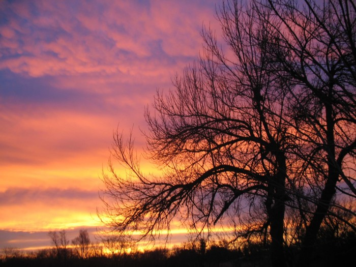21. A stunning January sunset in Pawnee City was frozen in time by Patti Roberts Rice.