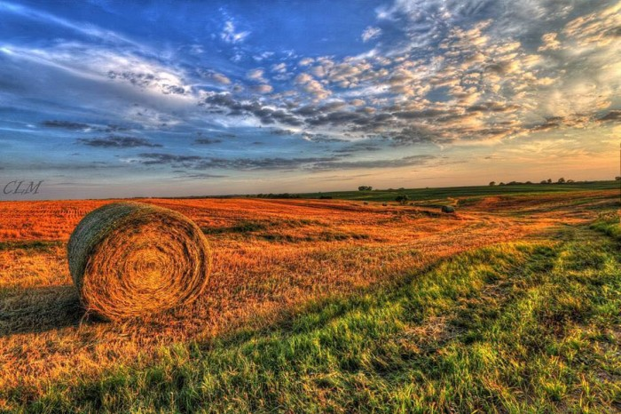 13. These hay bales catch the sun's gentle golden rays in a field - a comforting sight for native Nebraskans.