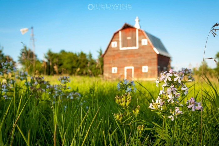 16. This unique view of a summer day on a farm was captured near Seward.