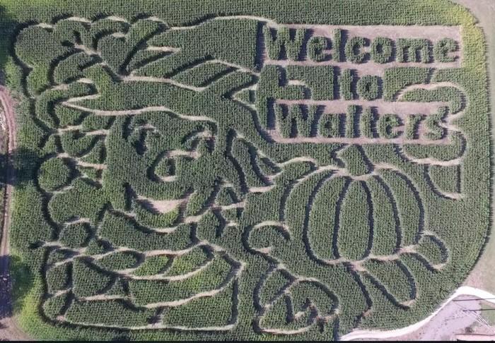 9. Walter's Pumpkin Patch (Burns)