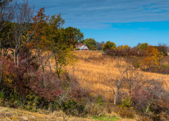 10. Jeanie Jordan took this photo of the charming countryside in Iowa County.