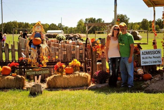 11.Storie's Pumpkin Patch, Waynesville
