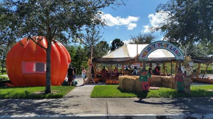 9. Pumpkin Towne, South Florida (Jupiter, Stuart, Wellington)