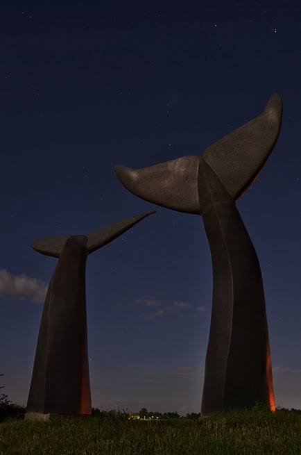 16) Bill Chandler can be credited for taking this illuminating shot of the Whale Tails in Williston during the full moon.