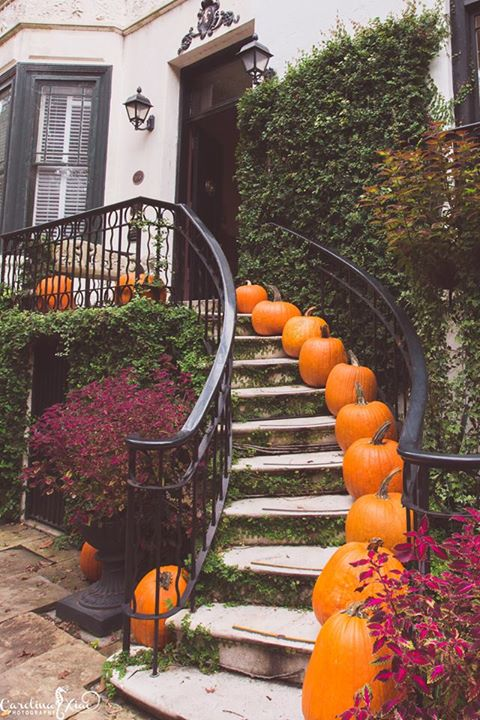 5. Welcoming October in Savannah by Carolina Xiao Photography