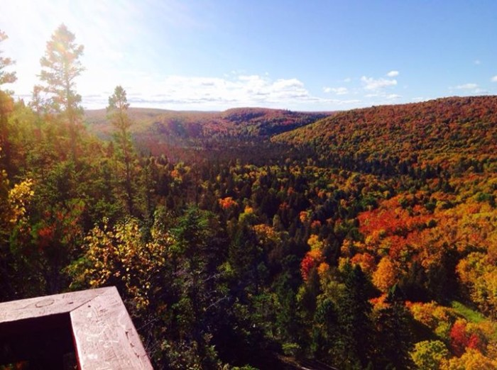 2. Jackie Murphy Nowaczewski captured the phenomenal fall colors at Lutsen this week! Wow!