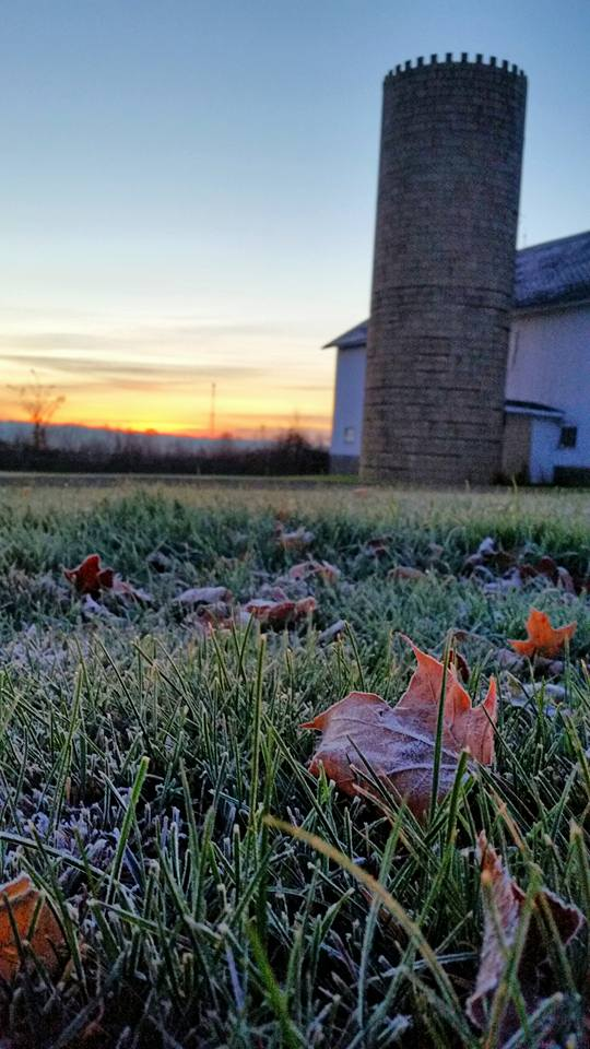 19. First morning frost in Greenwich, OH