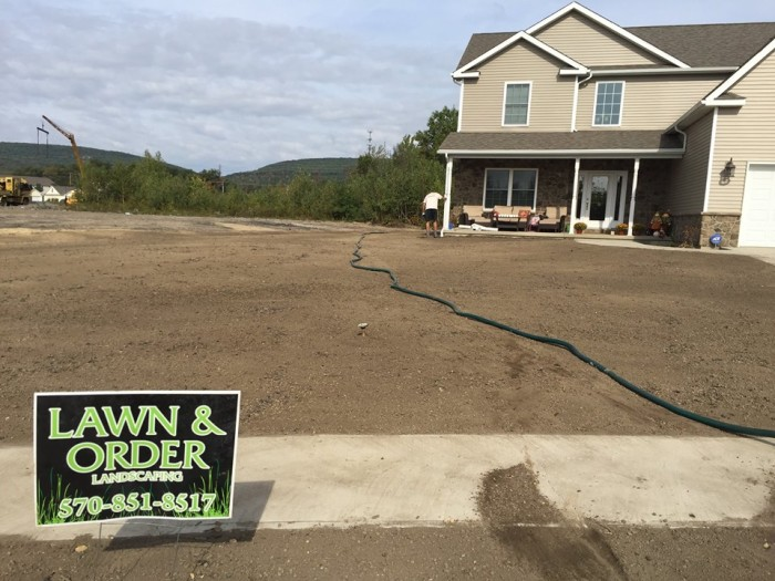 1. Lawn and Order, Dunmore
