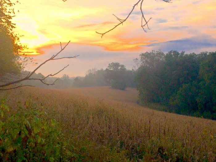 7. Jerry Joerdt may get my vote for favorite picture this week. He shared a spectacular picture of Wabash County with us!
