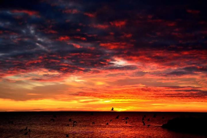 9. This dramatic sunset over Lake Erie has set the entire sky ablaze.