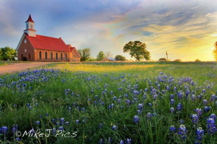 19) How about this peaceful field of bluebonnets in Mason County, y'all?