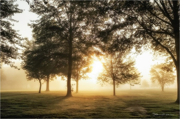 14. Steven Deam shared a very pretty picture of an early morning shot of a golf course near Fort Wayne with us!