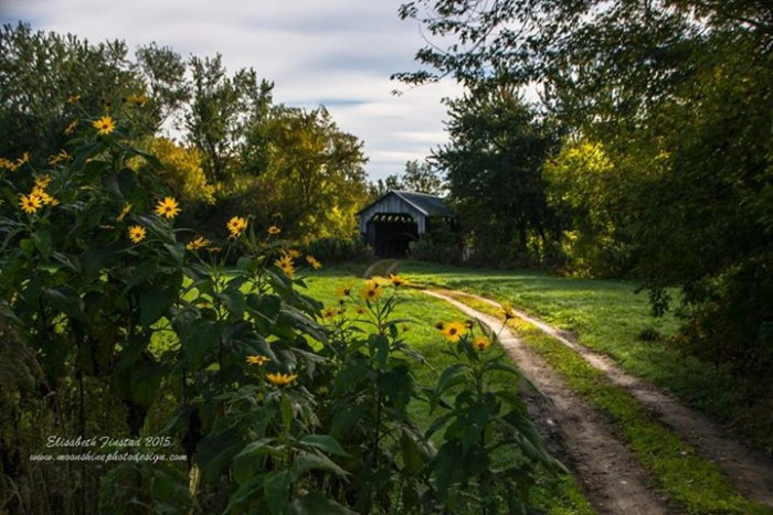 19) Elizabeth Finstad's shot of the Gates' Farm bridge in Cambridge is so inviting you'll be dying to take a trip there this fall.