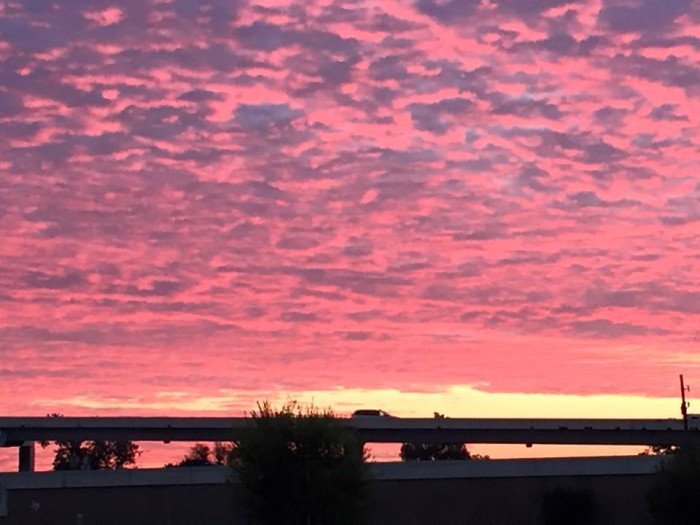 12) Cynthia Tee captures this incredible pink sunrise on her way to work in Houston, Texas!