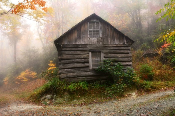 2. Cabin in the woods.