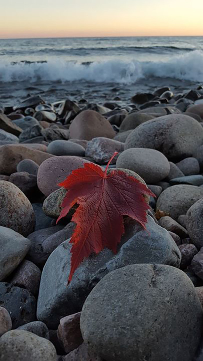 12. Brianna Cusack captured the essence of MN fall with this fantastic photo on the beach of Grand Marais!