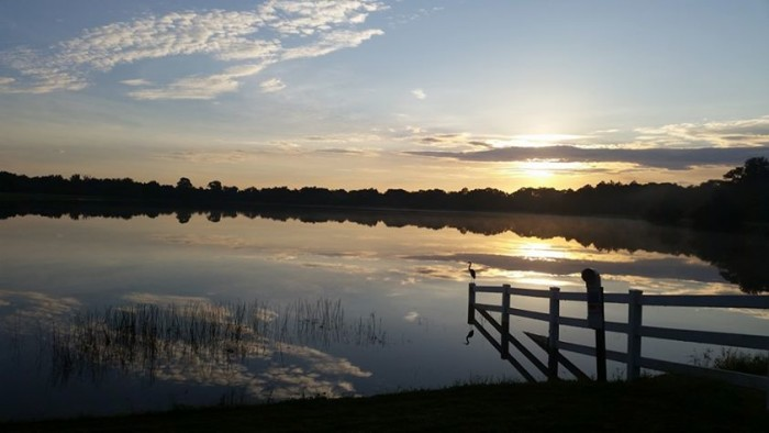 9. Lisa L Eicher shared this photo of a perfect morning in Lakewood Ranch.