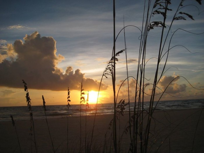 3. Rebecca Rarey shared this photo of Coquina Beach in Bradenton Beach.