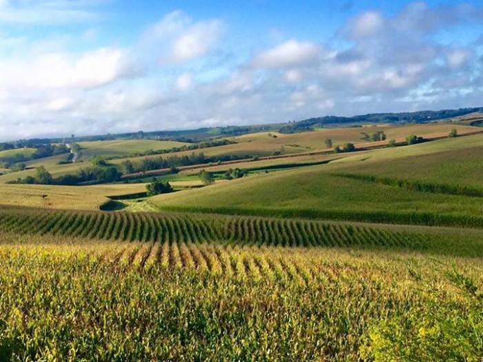 8. Melanie Trewin Jencks captured this amazing view of a field west of Elkader.