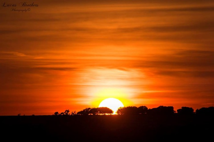 9) Look at that gorgeous glowing sun illuminating the Texas sky! Taken by Lucas Brothers Photography.