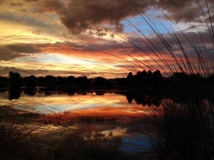 15. Don Easley shared this spectacular sunset at Lake Cadence in The Villages.