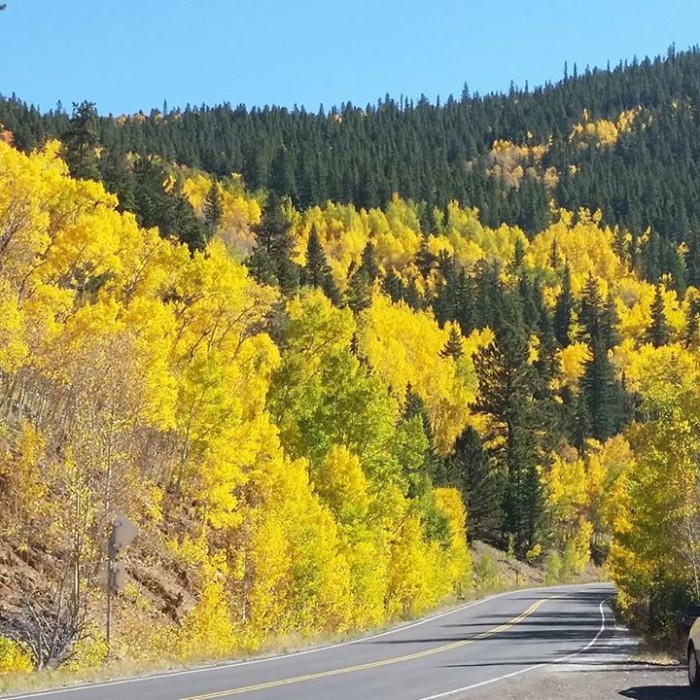 2. Colorado is the poster child for fall.