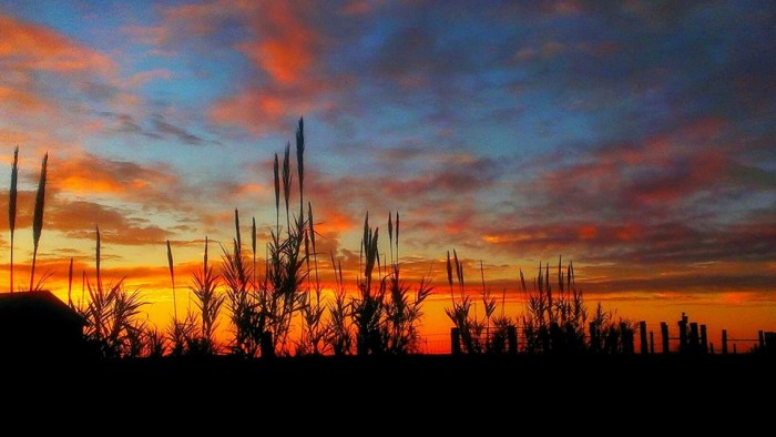 20) And finally, another spectacular sunrise captured by Kenneth Wright in Shiner, Texas.