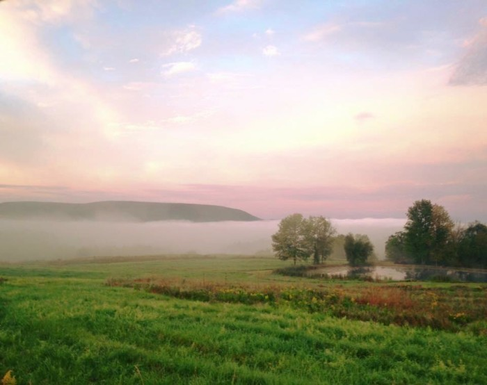 12. The mist rises seductively out of a valley in Bradford County.