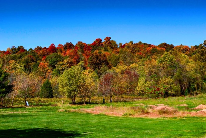 10. Fall day in Ross County