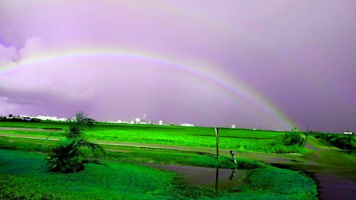 6) A lovely shot of a rainbow in Surfside Beach, Texas! I love the striking green colors in this one.