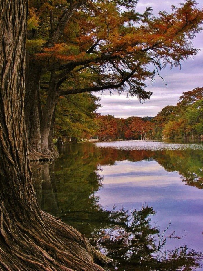 2) You can see that fall has arrived at Garner State Park in Concan, TX!