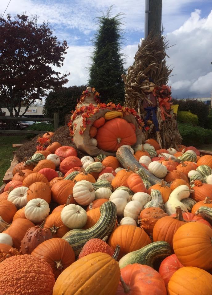 9. Fall on display.