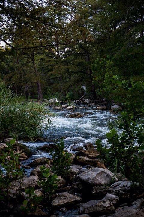 6) A tranquil scene at the Guadalupe River, taken by Julie O'Daniel Glenn.