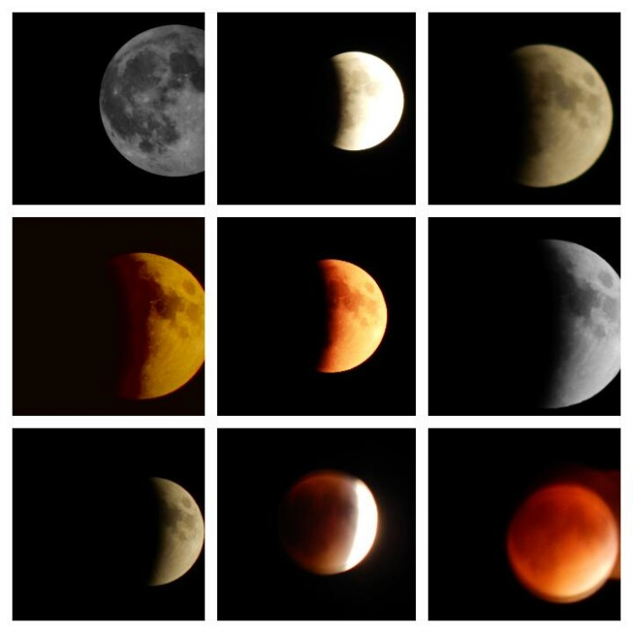 3) Every stage of the recent lunar eclipse, captured by  Carin Beth.